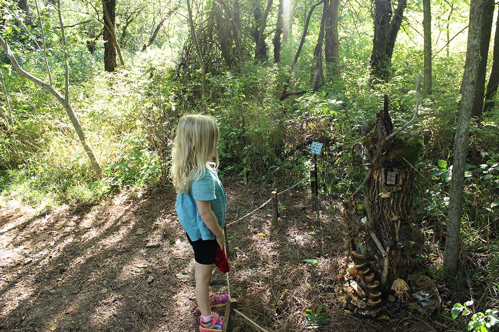 Overland Park Arboretum Fairy Houses - Missalaneyus